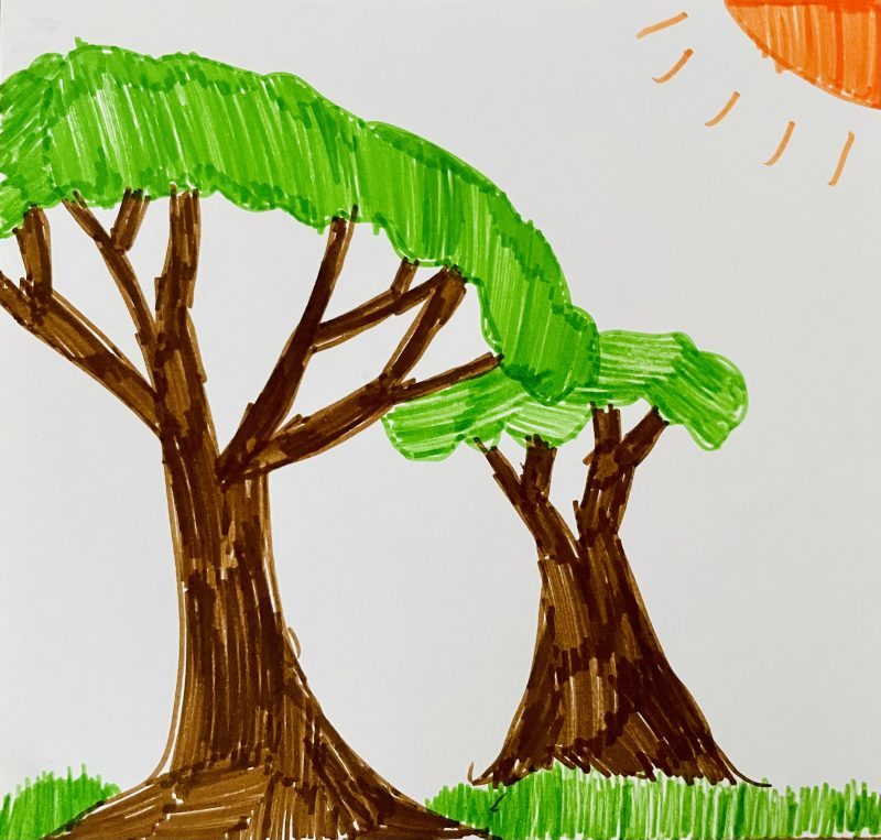 """""""I love big, green trees' by Connor, aged 9"""